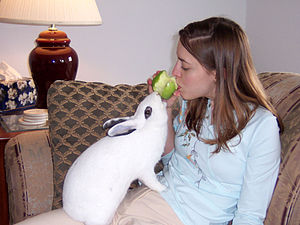 Rabbit (named Mopsy) sharing an apple with his...