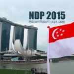 NDP 2015 Aerial Display and Fireworks View from The Float